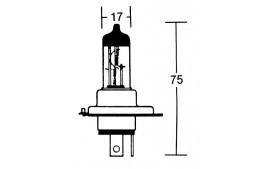 Ampoule hs1 px43t
