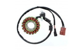 Alternateur adaptable origine APRILIA ELECTROSPORT